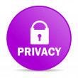 Privacy web icon — Stock Photo #53791277