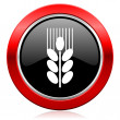 Grain icon agriculture sign — Stock Photo #62943759