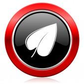 Nature icon leaf symbol — Zdjęcie stockowe