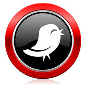 Twitter icon — Stock Photo