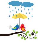 Birds with umbrella — Stock Vector
