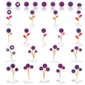 Colorful springtime flowers set — Stock Vector