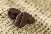 Coffee beans at burlap sack — Stock Photo