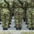 Soldiers in formation, back view — Stock Photo #63077801