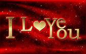 I love you inscription — Stock Vector