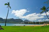 米国ハワイ州カウアイ島ナウィリウィリの美しい景色 — ストック写真