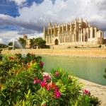 The Cathedral of Santa Maria of Palma de Mallorca, La Seu, Spain — Stock Photo #60218233