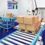 Robotic palletizer — Stock Photo #52497329