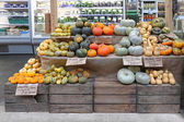 Pumpkins and Squash — Stock Photo
