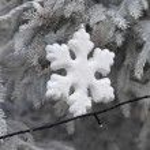 Snowflake — Stock Photo #57302605