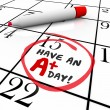 Have an A Plus Day Words Circled Calendar — Stock Photo #52848411