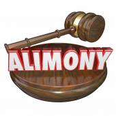 Alimony 3D Word Judge Gavel Legal Court Case Settlement — Stockfoto