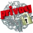 Privacy Chain Link Ball Lock Chain Private Secure Information — Stock Photo #52850111