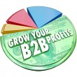 Grow Your B2B Profits Pie Chart Increase Business Sales — Stock Photo #52852431