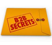 B2B Secrets Success in Business Sales — Stock Photo