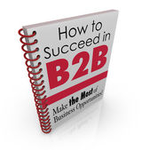 How to Succeed in B2B Business Advice Information Book — Stockfoto