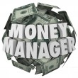 Money Manager 3d Words Ball Cash Financial Advisor — Stock Photo #55026549