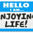 Hello I Am Enjoying Life Name Tag Sticker Relaxation Vacation Re — Stock Photo #55026577