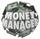 Money Manager 3d Words Ball Cash Financial Advisor — Foto Stock