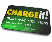 Charge It Plastic Credit Card Shopping Borrow Money Pay Later — Foto de Stock