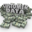 Customer Data in 3d letters — Stock Photo #59575211