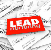 Lead Nurturing words on business cards — Stock Photo