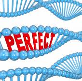 Perfect word in 3d letters in a DNA strand — Stock Photo