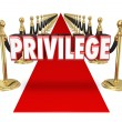 Privilege word in red 3d letters on a red carpet — Stock Photo #61368915