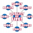 Quality of Life 3d words on a grid or diagram — Stock Photo #61368929