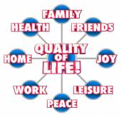 Quality of Life 3d words on a grid or diagram — Stock Photo