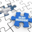 Secret Ingredient words on a puzzle piece — Stock Photo #63438073