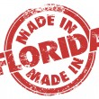 Made in Florida words in round red stamp — Stock Photo #66103847