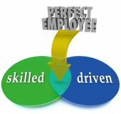 Perfect Employee Venn Diagram Skilled Driven Workers Personnel — Stock Photo