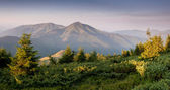 Carpathian mountain valley during sunrise — Stock Photo