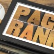 Page rank - SEO concept — Stock Photo #53727099