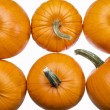 Six pumpkins on white — ストック写真 #54239281