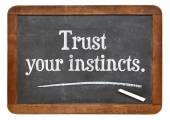 Trust your instincts — Stock Photo