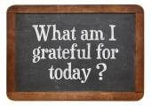 What am I grateful for today? — Stock Photo