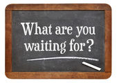 What are waiting for? — Stock Photo