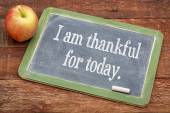 I am thankful for today — Stock Photo