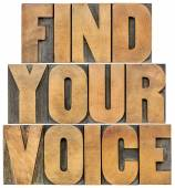 Find your voice — Stock Photo