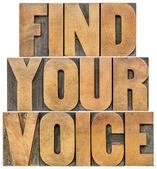 Find your voice — Stok fotoğraf