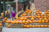 Pumpkin shopping — Stock Photo
