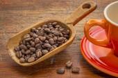 Scoop of coffee beans — Stock Photo
