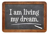 I am living my dream — Stock Photo