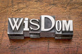 Wisdom word in metal type  — Stock Photo
