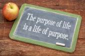 The purpose of life concept — Stockfoto