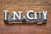 Tenacity word in  metal type  — Stock Photo