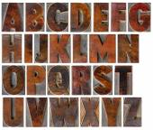 Alphabet in vintage wood type — Stock Photo