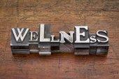Wellness word in metal type — Stock Photo